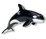 Handpuppen von Folkmanis aus den USA aus hochwertigen Materialien bieten kreativen Spielspaß für die ganze Familie. Tierfiguren der Safari Ltd. aus den USA sind naturgetreue Nachbildungen, u.a. erstellt unter Mitarbeit des Monterey Bay Aquarium® in Kalifornien.