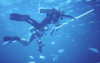 Photo © 2002 www.watersafetyshop.com. Bei allen Tauchgängen sollte ein 3-minütiger Sicherheitsstopp durchgeführt werden. SUUNTO Tauchcomputer unterstützen den Taucher bei der Durchführung dieser Maßnahme.