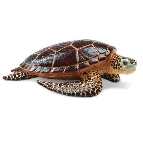 260429-safari-incredible-creatures-sea-turtle-1