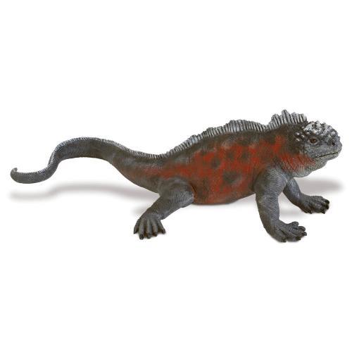 262329-incredible-creatures-galapagos-marine-iguana-1.jpg