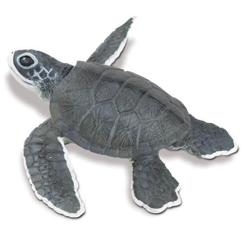 268129-incredible-creatures-sea-turtle-baby-1