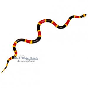 256929-incredible-creatures-coral-snake-baby-1