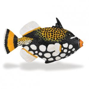 259329-incredible-creatures-clown-triggerfish-1