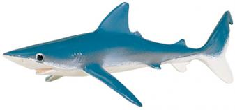 Monterey Bay Collection Blauhai